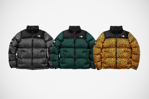 Supreme x The North Face I