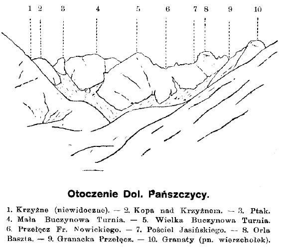 panszczyca
